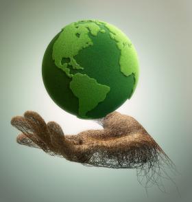 8c70d0138f17 Environmental News Network - Carbon dioxide fertilization is ...