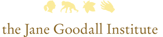 for more information  please visit www janegoodall org